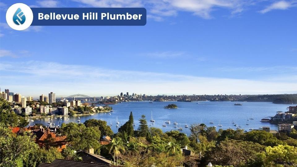 Bellevue Hill Plumber