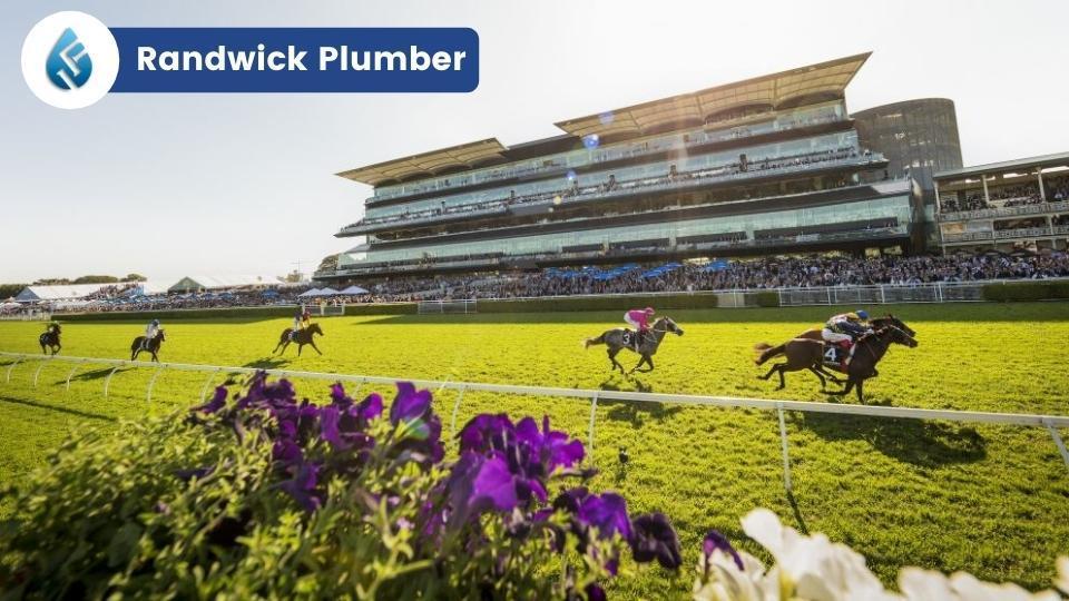 Randwick Plumber